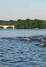 philly_tri_swim_150.jpg